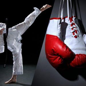 Judo & Boxing
